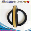 Accessories Oil Seals, NBR, FKM, Viton, Sc, Tc, Tb, DC