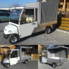 Electric Utility Car/Cart/Buggy (DEL3042GCX2, 2-Seater)