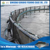 Sea Bream Farming Cage, Large Capacity Sea Cage with Mooring
