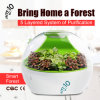 Am: 10 Smart-Forest Ecological Air Cleaner with HEPA Filter, Negative Ions to Remove Formaldehyde, Pm2.5, Tovc Mf-S-8700