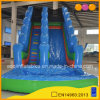 Indoor Inflatable Water Slide with Pool for Family (AQ1038-2)