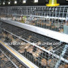 Hot High Quality Automatic Poultry Bird Cages Equipment for Pullet Chicken