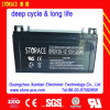 12V 120ah Solar SMF AGM Battery Suplier