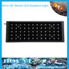 T8 LED Aquarium Light 90cm 64*3W Bridgelux by Remote Controller (GL-A01-64*3W)