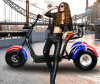 3 Wheel Harley Citycoco Electric Scooter with 1000W 60V/20ah