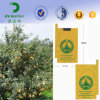 Waterproof Environmental Paper Protection Bags for Mango Growing Fruit