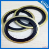 3/2lips Combinationed Gaskets /Bonded Gaskets