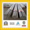 Top Quality Stainless Steel Bar/Rod on Sale