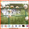 High Quality Plastic Coated Holland /Dutch Wire Mesh /Euro Fence (XM-EURO)