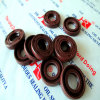 NBR / FKM Tc Oil Seal for Motor with Spring 20*34*7 / Customized
