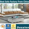 New Arrival L Shape Modern Leather Sofa Furniture (B. 928)