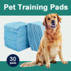 Large Training Pads for Puppies and Adult Dogs (TP2436)
