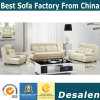 New Model Factory Wholesale Price Office Leather Sofa Furniture (A31)