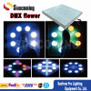 2015 China Guangzhou New Design Product Club Bar Disco LED High Bright Dance Flooring Factory