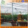 Polycarbonate Sheet Greenhouse as Ecological Restaurant