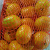 Golde Supplier of Sweet Baby Mandarin