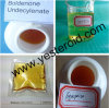 Injectable Muscle Mass Gain and Cutting Steroid Boldenone Undecylenate/ Equipoise