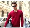 Men′s Cashmere Sweater V Neck (13brdm001-3)
