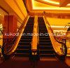 Luxury Passenger Escalator