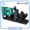 6 Inch Double Suction Horizontal Diesel Engine Centrifugal Pump for Field