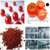 ISO Certificated Factory Supply Hot Sale Best Price Lycoypene Extract