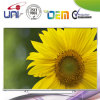 Premiun HD LED TV (On Sales)