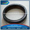 Xtsky High Quality Rubber Oil Seal (0209973947)