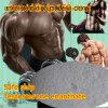 Steroid Hormone Primoteston Testosterone Enanthate Test Enan Primoteston Safe Ship