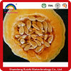 Water Soluble Pumpkin Seed Extract/Cucurbita Pepo Seed Extract/Pumpkin Seed Powder