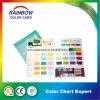 Cmyk Full Color Customized Folded Glossy Paint Brochure