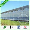 Clear Plastic Corrugated Polycarbonate Roofing Sheets for Greenhouse
