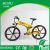 Manufacturer 26 Inch Hot Selling Aluminum Electric Bike for Adult in Europe