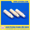 Supply Alumina Ceramic Guide Pin/99% Al2O3 Pin
