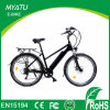 26 Inch Green Light Electric Cycle Electric E Cycle
