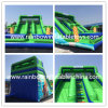 Newly Moana Theme Inflatable Slide with Pool/Inflatable Water Playground