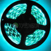 High Quality SMD5050 LED Flexible Strip 60LEDs/M with Competitive Price