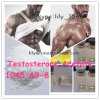 Injectable Anabolic Steroid Hormone Powder Testosterone Acetate for Muscle Bodybuilding