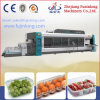 Fruit Container Making Machine Multi-Station Robot Stacking