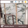 White Clivia Marble Blocks with Competitive Price