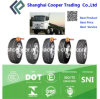 China Longmarch/Roadlux Radial Truck Tyre (LM516)