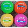 Colorful Children Sports Phthalate Free Inflatable PVC Volleyball