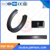 Demaisi NBR Rubber Tc Oil Seal with Double Lips