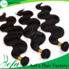 100% Human Hair Brazilian Virgin Hair Loose Wave