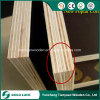 15mm 18mm Black Film Faced Plywood for Construction