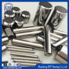 Bearing Accessories Wholesale to Roller Distributor Needle Tapered Roller DIN5402-3-2012 Material 1.3505
