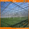 Super Span Glass Multi-Span Greenhouse