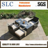Popular Rattan Outdoor Furniture (SC-A7615)