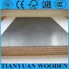 18mm Phenolic Overlay Film Faced Plywood Sheet