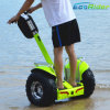 Hot Selling Ecorider Esoii 2 Wheels Standing Electric Self Balancing Scooter