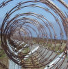 Single Coil Galvanized Razor Barbed Wire